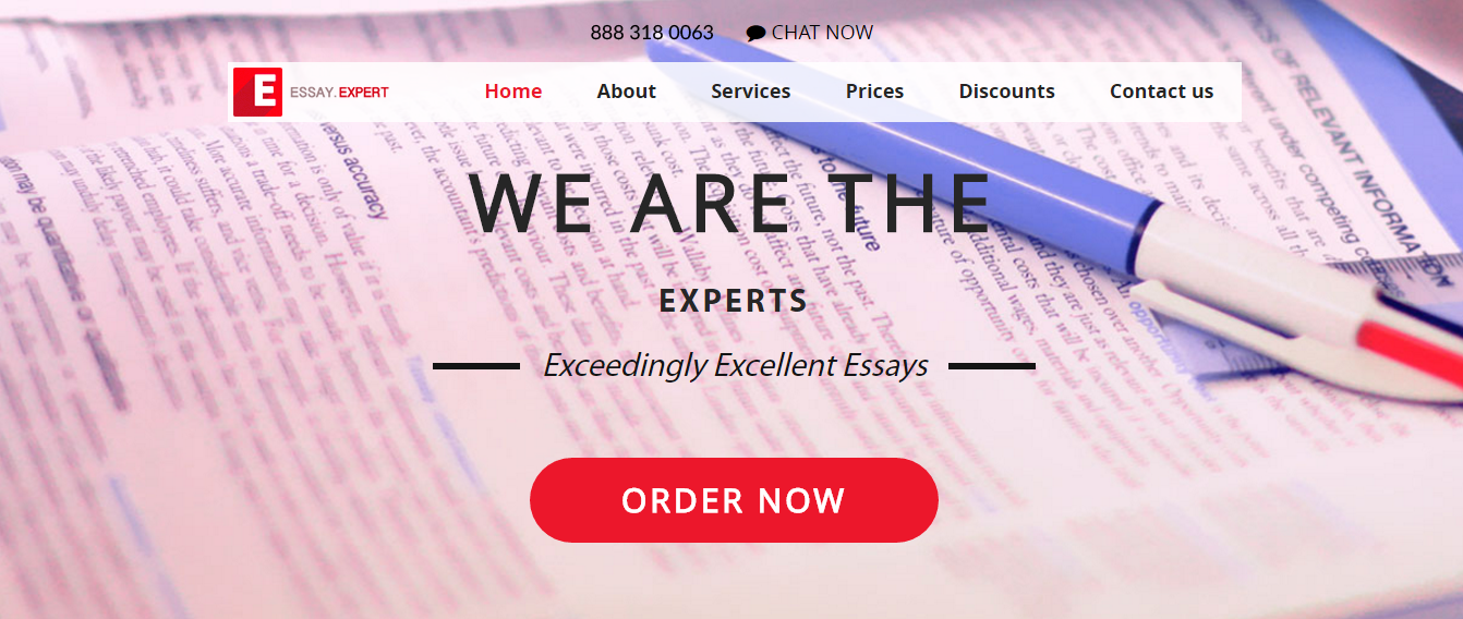 Essay Expert Review