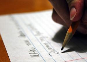 Essay-company