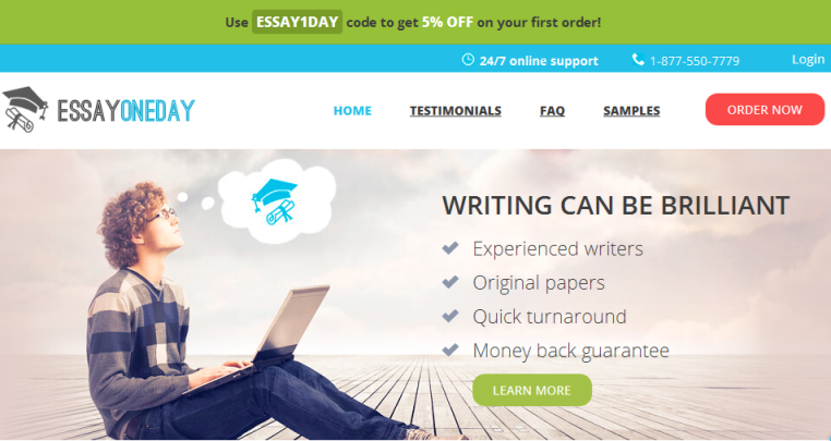 Essayoneday Review